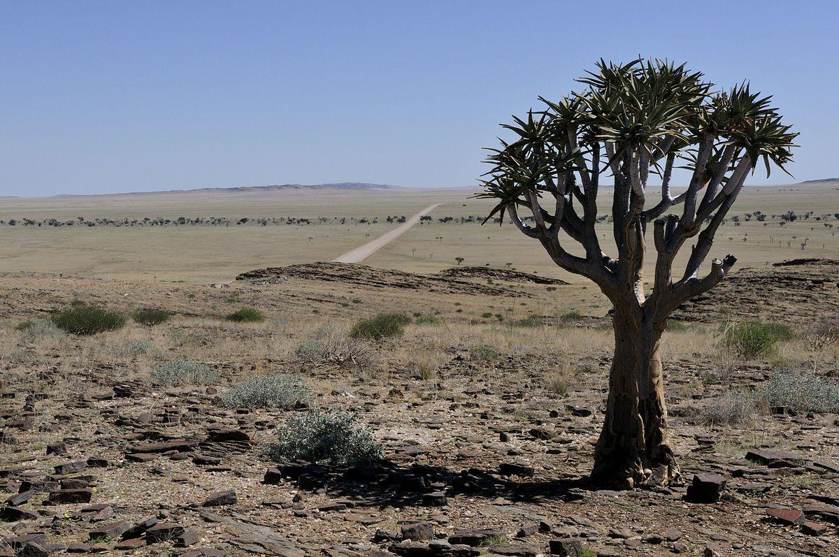 1200px-Namibia-1113