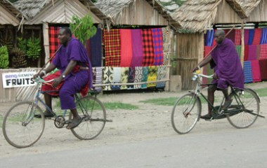 טנזניה